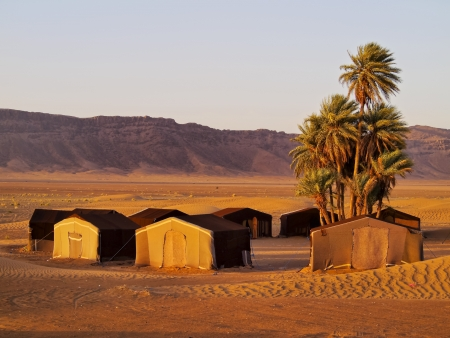 Oasis and a camp on Zagora desert in Morocco, Africa photo