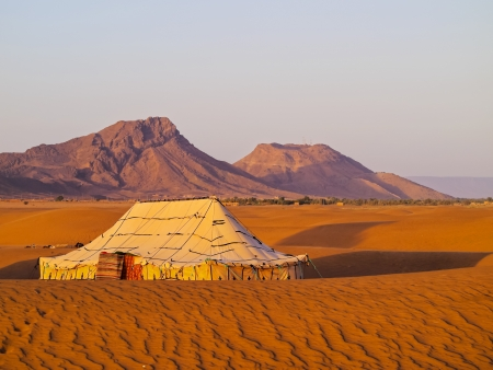 mountain oasis: Oasis and a camp on Zagora desert in Morocco, Africa
