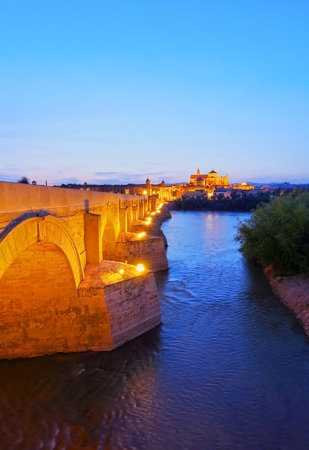 Night view of  Puente Romano - the Roman Bridge in Cordoba, Andalusia, Spain photo