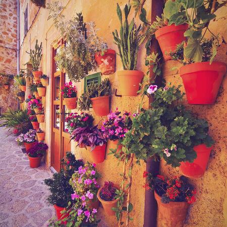 Flowerpots on the wall of Valldemossa on Mallorca, Balearic Islands, Spain photo