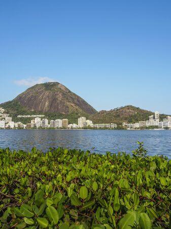 Brazil, City of Rio de Janeiro, Jardim Botanico Neighbourhood, View of the Rodrigo de Freitas Lagoon.