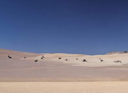 avaroa: Bolivia, Potosi Departmant, Sur Lipez Province, Eduardo Avaroa Andean Fauna National Reserve, Landscape of the Dali Desert.