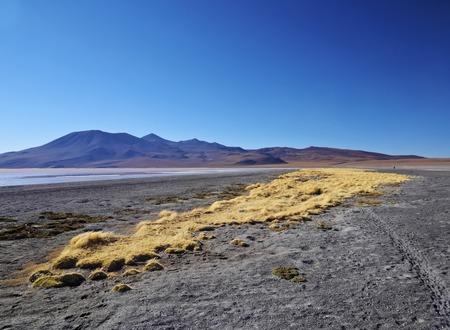 avaroa: Bolivia, Potosi Departmant, Sur Lipez Province, Eduardo Avaroa Andean Fauna National Reserve, View towards Laguna Colorada.