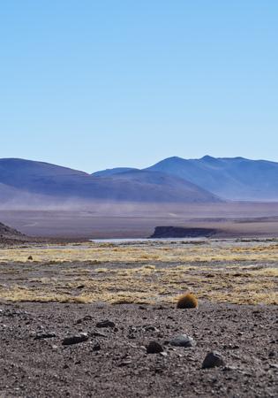 Bolivia, Potosi departmant, Provincia di Sud Lípez, Paesaggio della riserva nazionale di Eduardo Avaroa Andean Fauna. Archivio Fotografico - 67075109