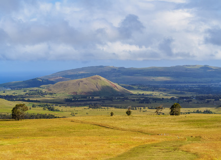 Landscape of the island seen from the way up to the Maunga Terevaka, Easter Island, Chile