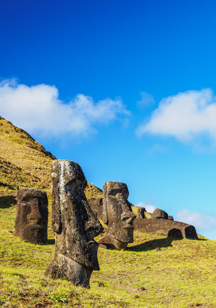 archeological: Moais at the quarry on the slope of the Rano Raraku Volcano, Rapa Nui National Park, Easter Island, Chile