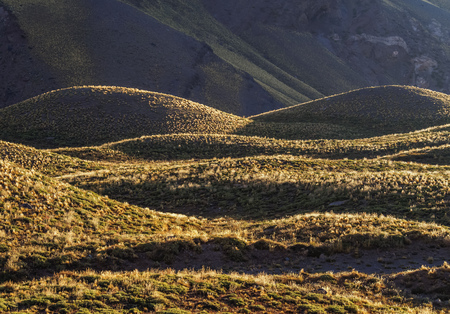 Horcones Valley, Aconcagua Provincial Park, Central Andes, Mendoza Province, Argentina