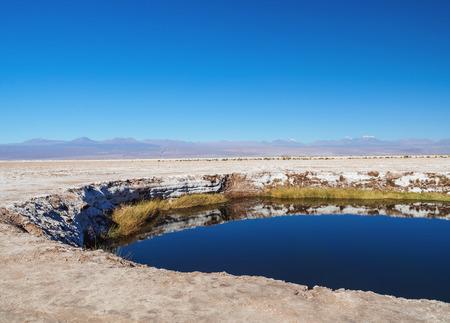 Ojos del Salar Lagoon, Salar de Atacama nearby San Pedro de Atacama, Antofagasta Region, Chile