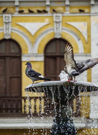 San Francisco Square, Old Town, Lima, Peru
