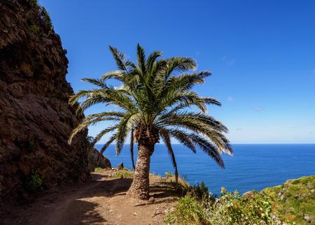 Anaga Rural Park, Tenerife Island, Canary Islands, Spain