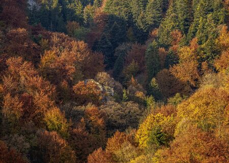 Autumn in Ojcow National Park, Krakow-Czestochowa Upland or Polish Jurassic Highland, Lesser Poland Voivodeship, Poland