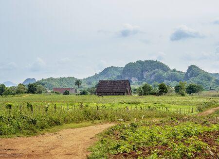 Vinales Valley,  Pinar del Rio Province, Cuba 写真素材 - 145589541