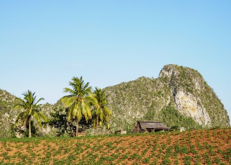 Vinales Valley, Pinar del Rio Province, Cuba