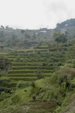 Terraces and buildings near Nagarkot. Taken here in the foothills of the Himalayan Mountains on a rainy overcast day, Nepal