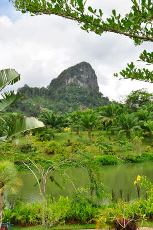 Pinnicles near Phangnga. Free standing mounds make up the landscape of this Southern Thailand area