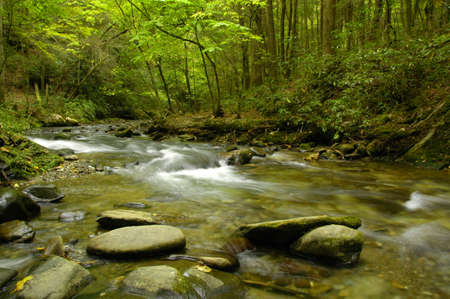 Rapids on Laurel creek. Flowing here through the Great Smoky Mountains National Park, TNNC, USA