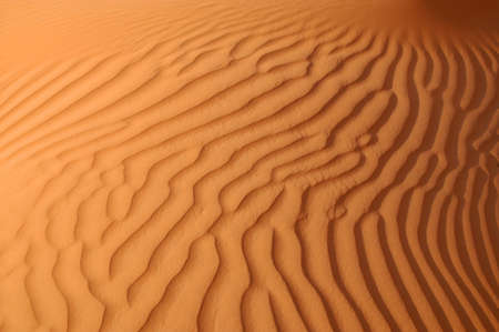 Liwa sand ripples. Wind-formed patterns in this collection of sand in the Arabian Desert, Abu Dhabi, UAE