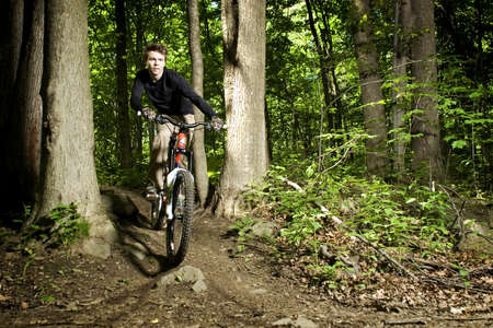 dirt: Mountain biker riding through trees downhill Stock Photo