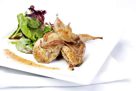 quail: Codornices con ensalada verde en plato blanco