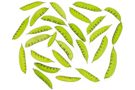 Green beans from Guatamala