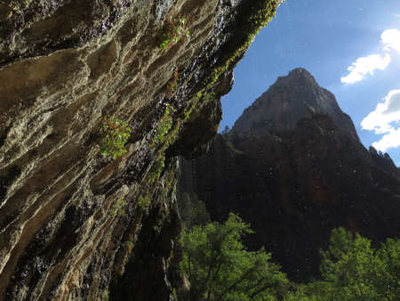 The weeping rock Zion Park