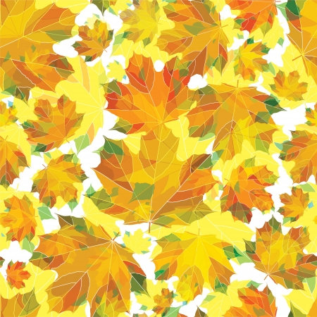Autumn leaves pattern  Stock Vector - 17871258