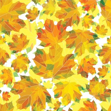 Autumn leaves pattern Stock Vector - 17871258