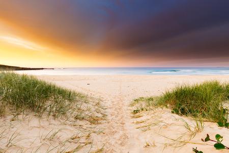 A sandy beach path leading to a stormy sunrise in Australia