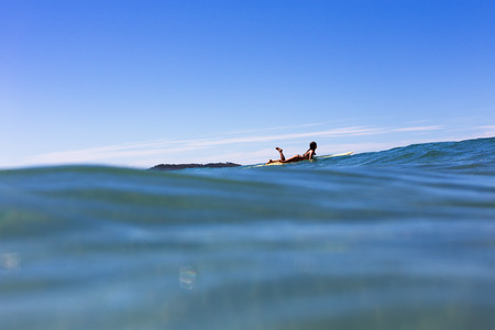 A young woman paddles on a surfboard over a vibrant tropical ocean in Australia. 版權商用圖片