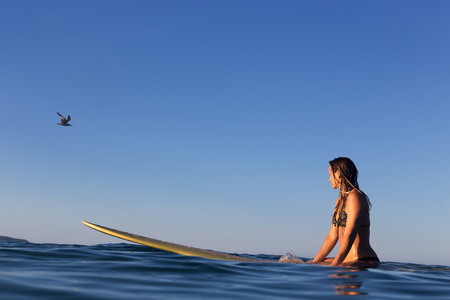 A female surfer sits on her surfboard in a calm ocean and watches as a sea bird flies by. 版權商用圖片