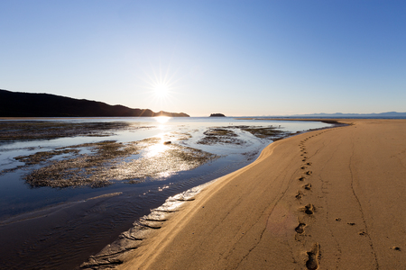 A set of footprints on a sandbar during a bright morning in the Abel Tasman National Park, New Zealand.