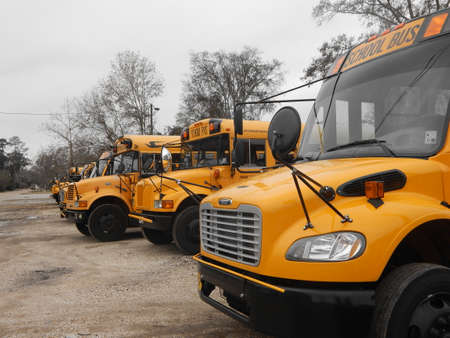 orleans parish: School Buses on a Winter Day Editorial