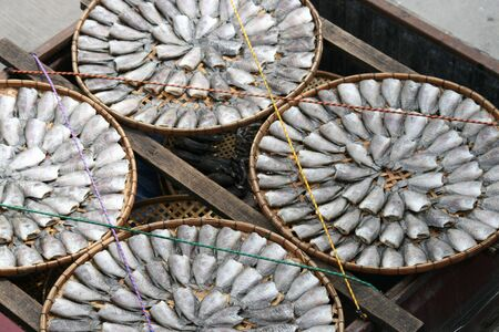 Fish drying in the sun, Thailand. Stock Photo