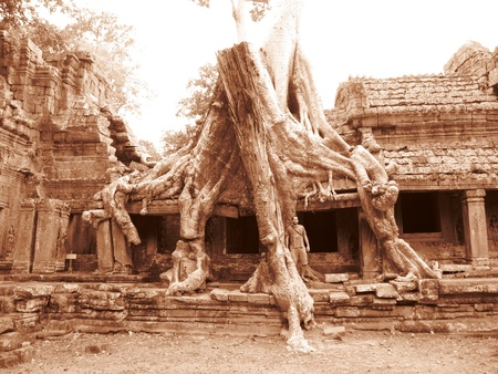 Bayon temple ruins, Cambodia                                photo