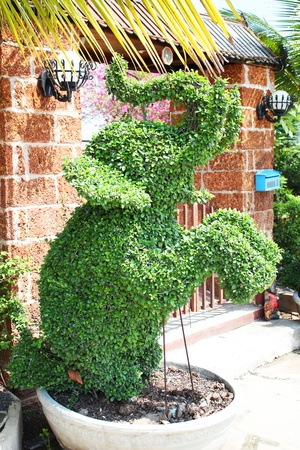 Elephant shaped bush at a house entrance in Thailand  photo