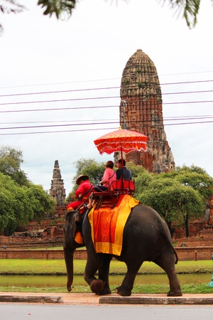 AYUTTHAYA, THAILAND - JULY 28  Thai people transport tourists for an elephant ride tour of the ancient city on 28, July 2012 in Ayutthaya