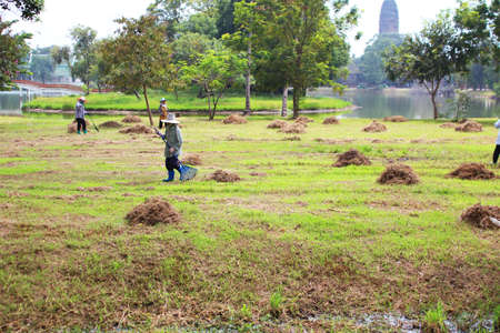 People working outdoors in Ayutthaya, Thailand  photo