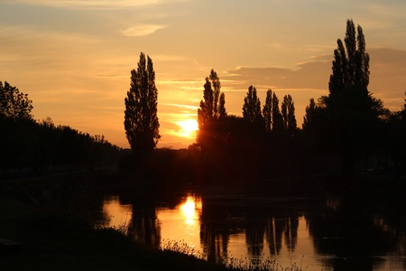 poplars: Sunset on River Ouse, Yorkshire, England