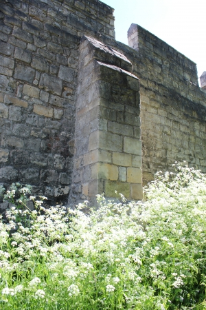 turreted: Medieval Stone Walls of York, England