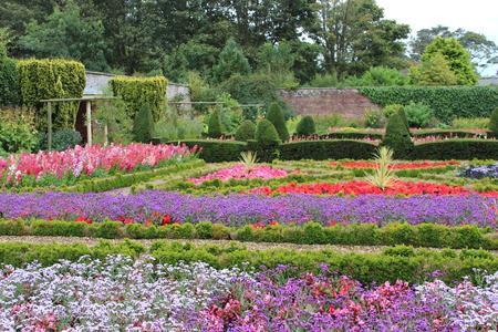path cottage garden: Walled Flower Garden With Box Hedges, Summer, England Stock Photo
