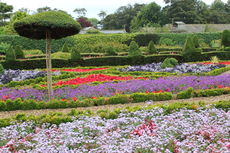 walled: Walled Flower Garden With Box Hedges, Summer, England Stock Photo