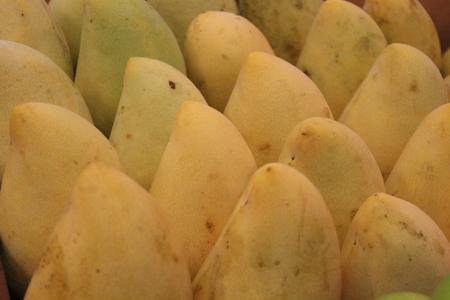Display of Mangoes, Thailand Stock Photo - 23697723