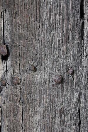 Medieval Wooden Door, England  photo