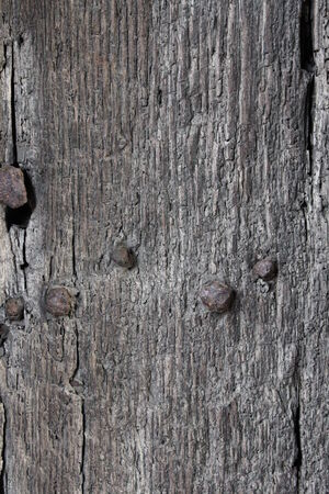 leaden: Medieval Wooden Door, England