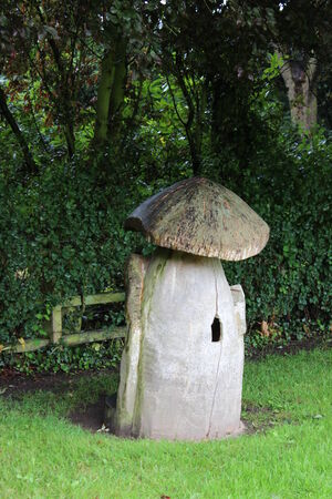 Wooden Toadstool Playhouse, England  photo