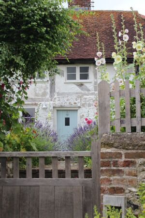 hollyhocks: Thatched Cottage in Rural England.