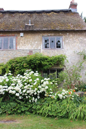 thatched cottage: Thatched Cottage in Rural England in Summer