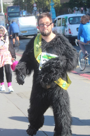 charisma: Gorilla Fun Run Event, London, September 19th 2015.