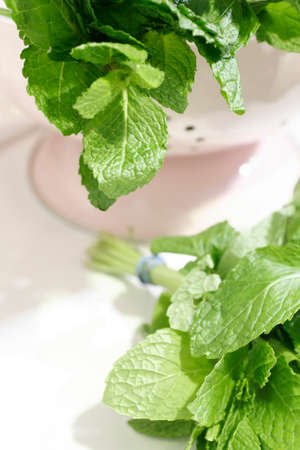 flavorings: A close up of mint leaves in a colander Stock Photo