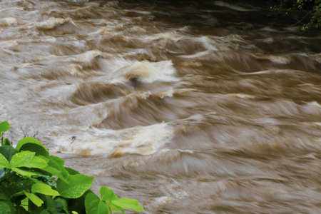Time-exposure of standing waves in the muddy, rushing waters of the Readdies River after Hurricane Florence.